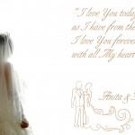 the wedding of Franky&Anita