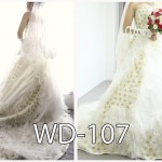 WD-107